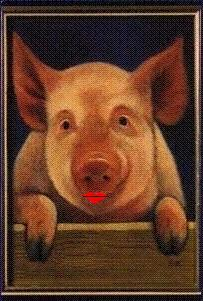 Pig with lipstick